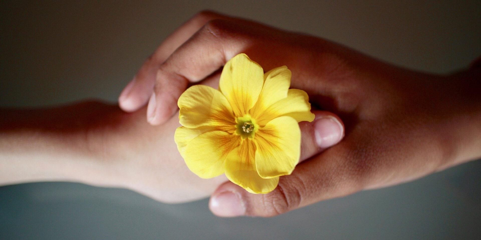 Hände mit Blume