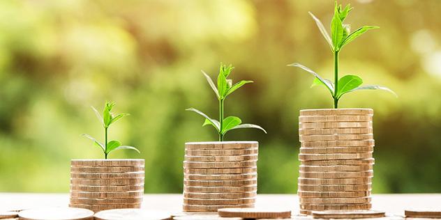 Münzen und Pflanzen, Bild: © pixabay/nattanan23